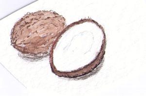 kokosnussmehl-kokusnuesse