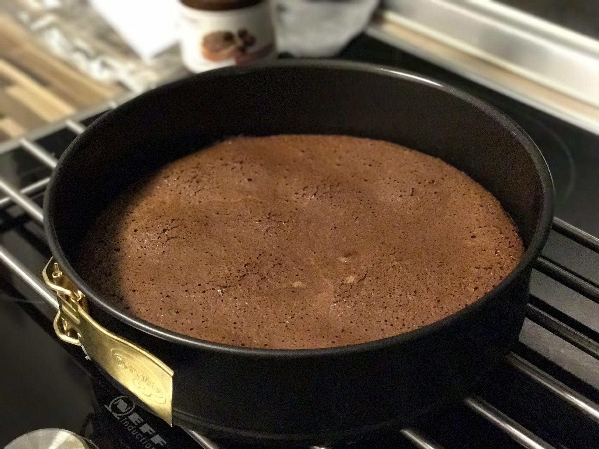 Haselnusscreme Kuchen in der Springform