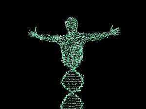 Du hast doch einfach gute Gene – Die Rolle der Genetik für deinen Traumkörpe