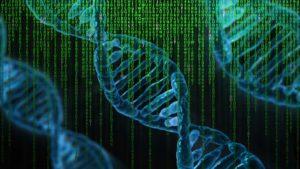 Du hast doch einfach gute Gene - Die Rolle der Genetik für deinen Traumkörper Teil 1