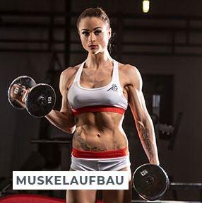 Trainingsplaene Muskelaufbau